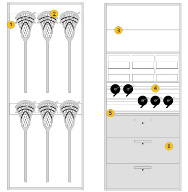 Lacrosse Sports Configurations Options