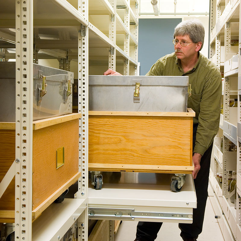 museum-shelving-pull-out-heavy-loads