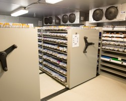 Compact cold storage in a pathology lab