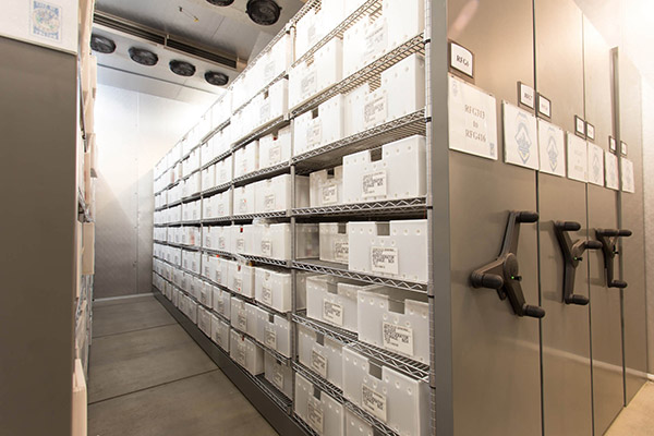 Spacesaver high-density shelving makes efficient use of space in a walk-in refrigerator storing biological evidence at the Tucson Police Department
