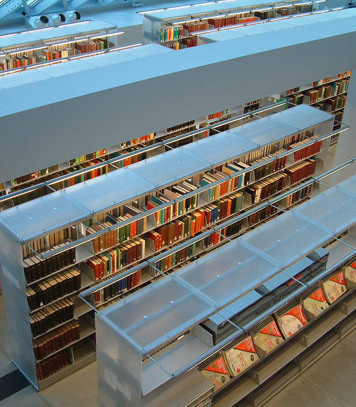 Sustainable Modern Library Storage Solutions