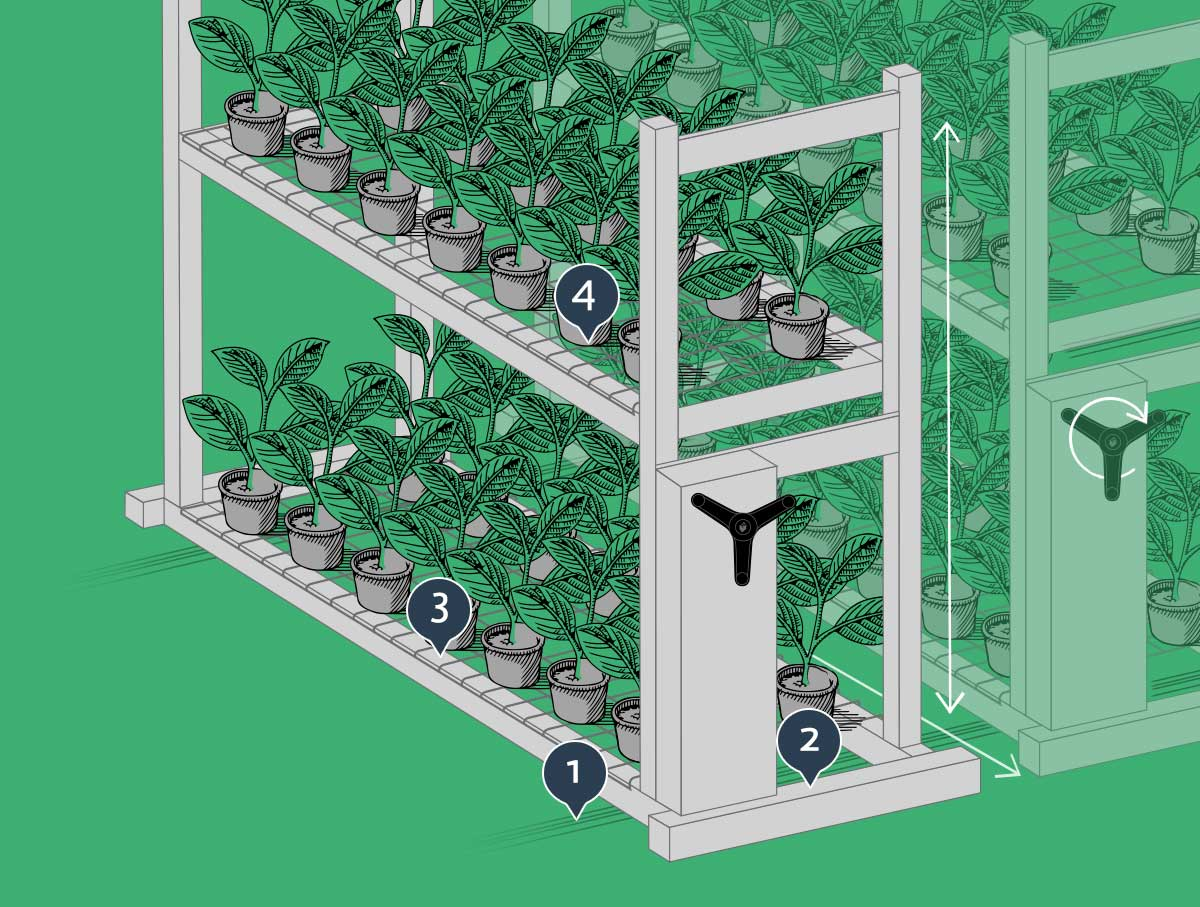 Cannabis Grow System for Cultivation