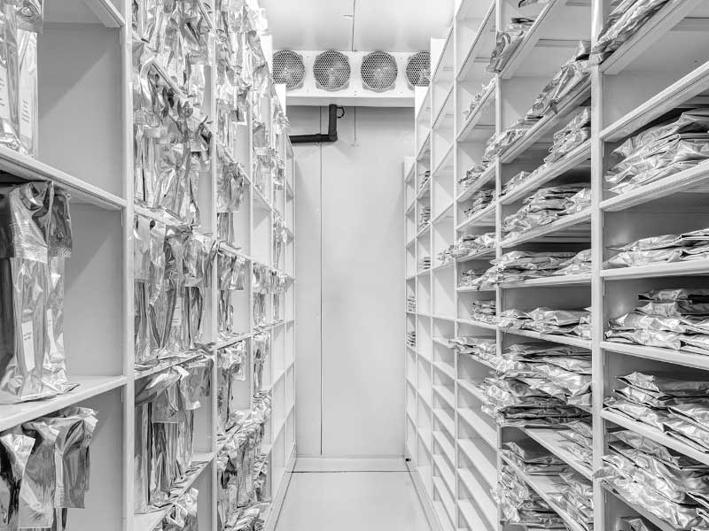 museum risk management cool compact shelving