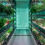 vertical racking indoor horticulture