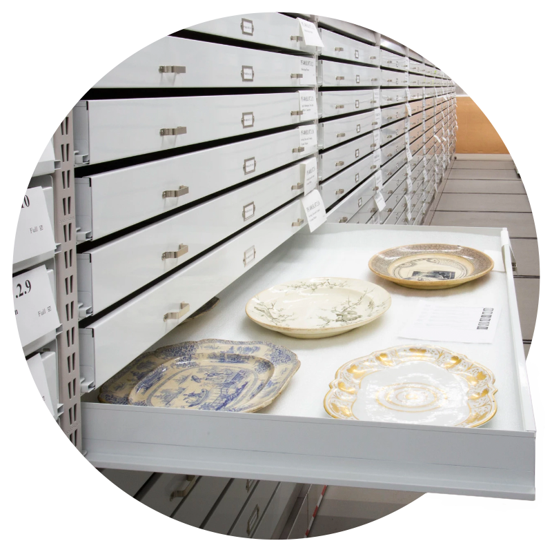 museum high-quality trays and drawers