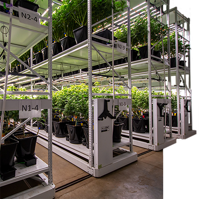 cannabis vertical racking mobile system