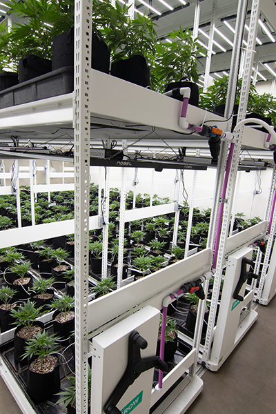 warehouse multi-tier vertical racking mobile grow systems