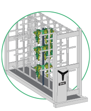 cannabis indoor farming drying system