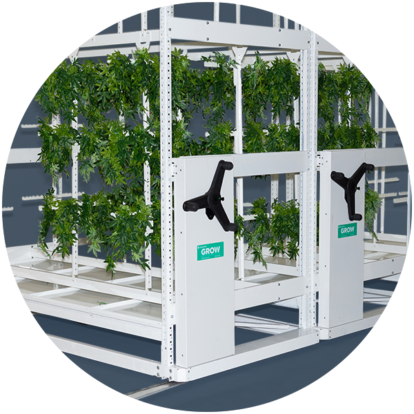 cannabis vertical mobile drying system