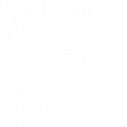 Public Safety Market Icon