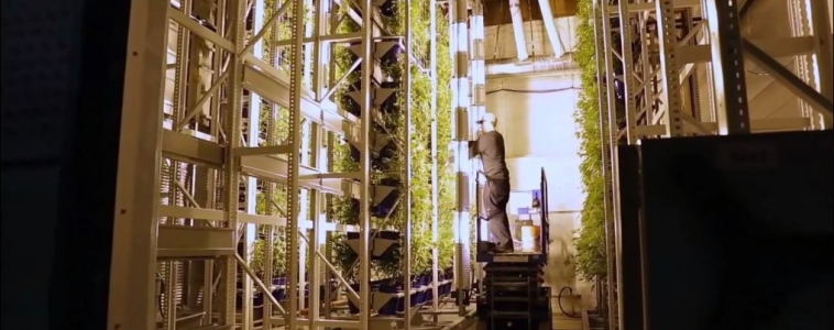 Making Vertical Growing More Lucrative with Mobile Storage